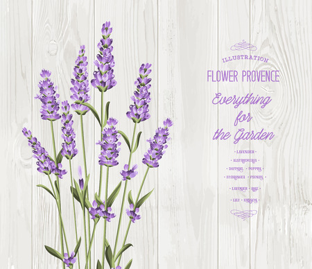 The lavender bouquet with text template over wooden texture. The lavender elegant card.