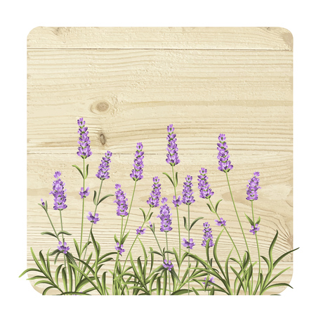 aromatic: Luxurious vintage frame. Aromatic lavender over gray wooden panels.