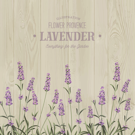 The lavender bouquet with text template over wooden texture. The lavender elegant card. Vintage postcard background vector template for wedding invitation. Vector illustration. Ilustracja