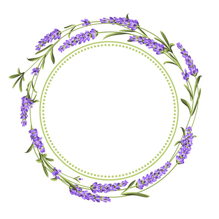 The lavender bouquet with text space over white background. The lavender elegant card. Vintage background vector template for wedding invitation. Vector illustration.
