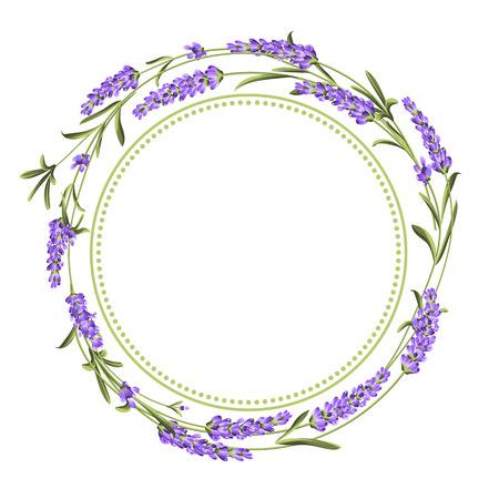 El ramo de lavanda con espacio de texto sobre fondo blanco. La lavanda tarjeta elegante. Plantilla de cosecha de vectores de fondo para la invitación de boda. Ilustración del vector.