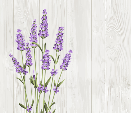 fragrant bouquet: Bunch of lavender flowers on a wood background Illustration