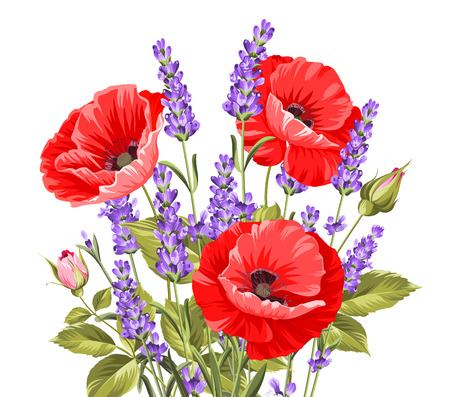 lavender: I love you card. Bunch of lavender and poppy flowers on a gray background. Lavender and poppy card for paper, label and other printing or web projects. Label with poppy flowers. Vector illustration.