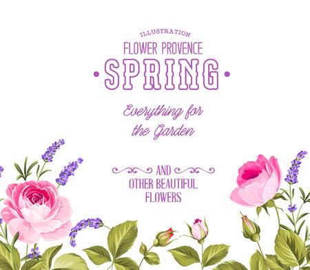 Hintergrund mit schönen Rosen und Lavendel. Vektor-Illustration.