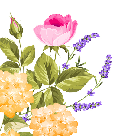 lavande: I love you card. Bunch of lavender and rose flowers on white background. Lavender and roses card for paper, label and other printing or web projects. Label with rose flowers. Vector illustration. Illustration