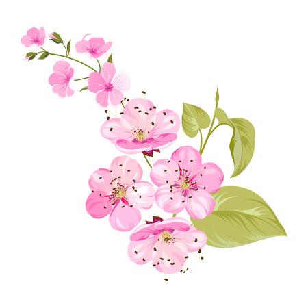 Las flores de Sakura para el fondo de primavera. Ilustración del vector.