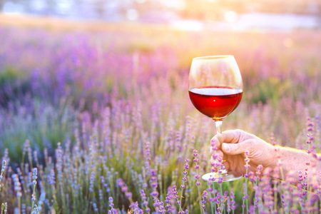 Close up hand holding a glass. Man holding glass of red wine in front of lavender field. Picnic on the field of spring flowers.