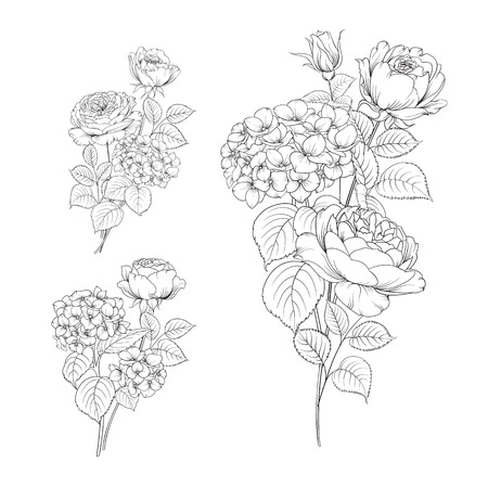 isolated flower: Floral garland of hydrangea and rose on white background. Flower head of blossom flower. Floral elements collection. Set of flowers.