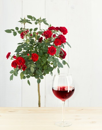 wine  shabby: Shabby chic interior elements. Red roses bush in front of wooden pannels wall. The glass of red wine placed on wooden table. Stock Photo