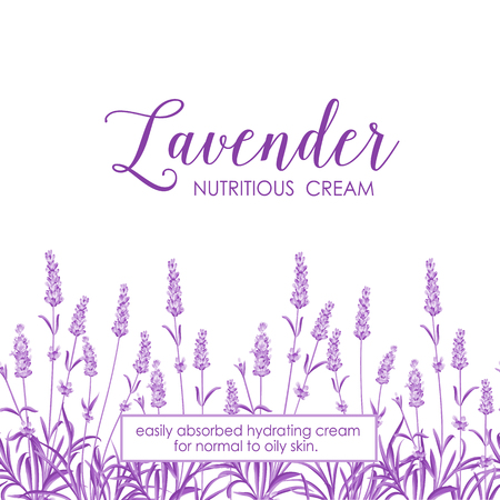 lavender oil: Beauty lavander skin care design. Lavender Oil text with white background. Regenerate cream and Vitamin Background of Concept Skin Care Cosmetic. Vector illustration.