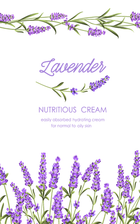 aroma: Card of white facial cream, fresh lavender flowers. Sweet floral aroma for skin care. Organic cosmetic. Vintage banner with wild flowers and medicinal herbs. Vector illustration.