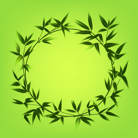 palmetto: Bamboo leaves frame over green background. Circle border of bamboo tree. Vector illustration.