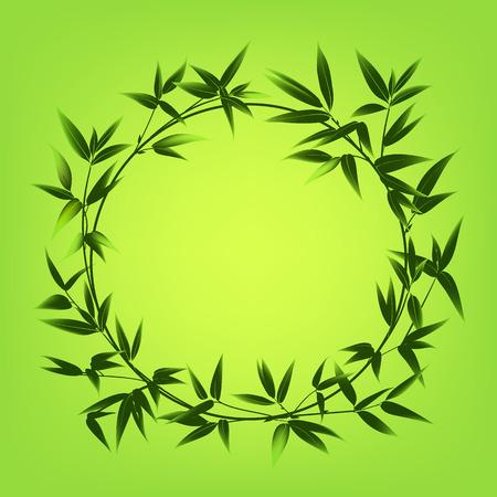 Kreis Grenze Von Bambus Baum. Vektor Illustration. Vektor. Ähnliche Bilder