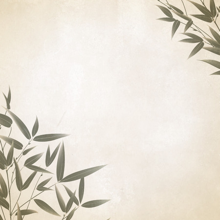 Chinese bamboo painted with a brush on the old paper. illustration.
