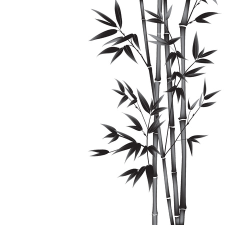 Ink paint bamboo bush. Card with black bamboo plants isolated on white background. Decorative bamboo branches. illustration.