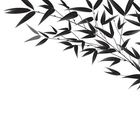 arbres silhouette: Décoratif branche de bambou isolé sur fond blanc.