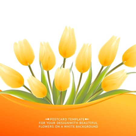 Yellow tulip spring flowers bouquet for your design. Vector illustration.