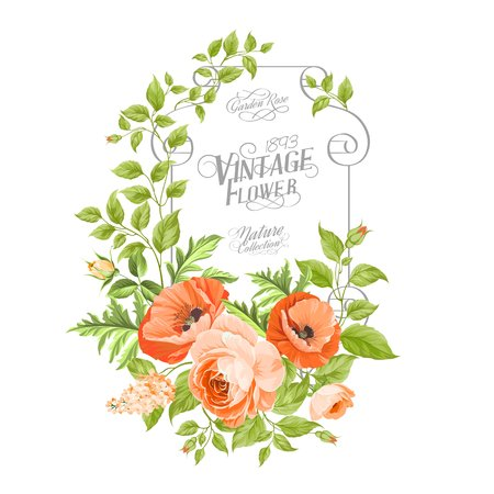 Vintage card background with beautiful poppies. Vector illustration.