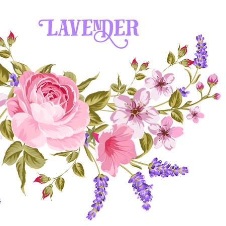 The Lavender sign. Garland of red rose, pink sakura and violet lavender flowers in vintage style. Card with custom sign Lavender and flower frame isolated over white background. Vector illustration.