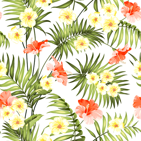 plumeria flower: Seamless tropical flower. Tropical flowers and jungle palms. Beautiful fabric pattern with a tropical flowers isolated over white background. Blossom plumeria for seamless pattern background. Illustration