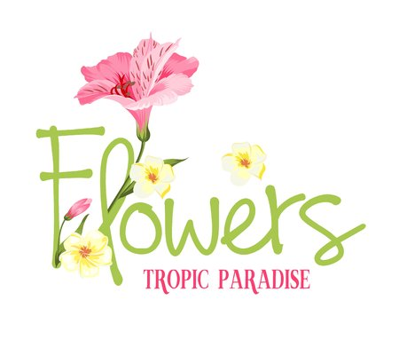 branch isolated: Tropic paradise Flowers. Hand drawn sign. Alstromeria pink branch isolated on white. Beautiful alstroemeria for your personal design. Vector illustration.
