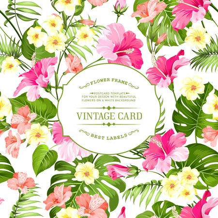 Tropical flowers label for vintage card. Yellow plumeria with text label isolated over white background. Vector illustration. Illustration