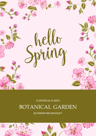 Cherry blossom card with sign Hello Spring. Text over pink background with sakura flower border. Vector illustration. Illustration