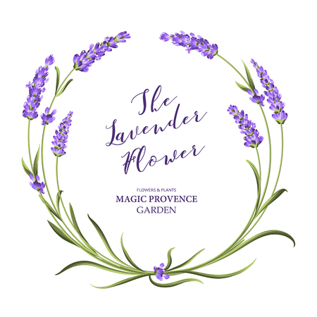 The lavender wreath with bouquet of flowers and text. Lavender blossom for marriage invitation. Frame with lavender flowers. Vector illustration. Ilustracja