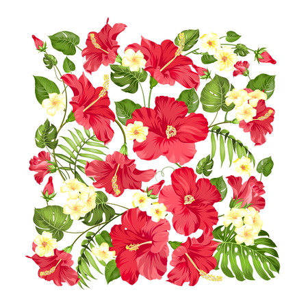 textile industry: Awesome pattern of Tropical flowers. Blossom flowers of hibiscus. Monstera leaves in rectangle frame isolated over white background. Vector illustration.
