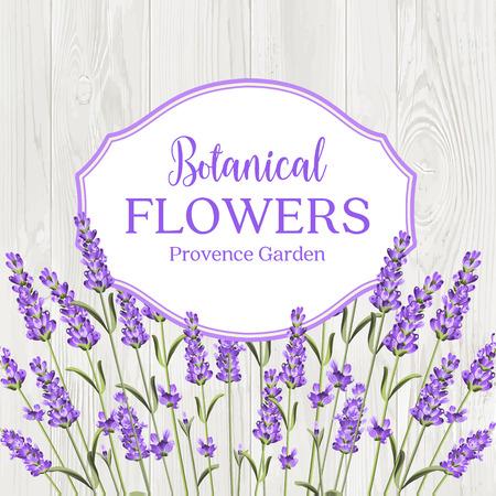 Beauty lavander label design with border over wooden frame. Botanical flowers text isolated over white background. Lavender garland. Vector illustration. Illustration