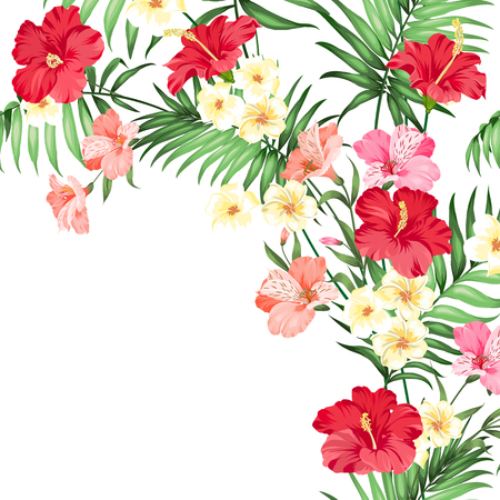 Tropical garland isolated over white background. Vector illustration.