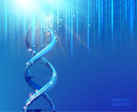 Scince illustration of bigdata uncoding of human genome. Abstract binary code in matrix style over blue background. Dna bigdata visualization. Vector illustration. Ilustração Vetorial