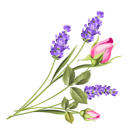 Wedding flowers bouquet of color bud garland. Label with rose and lavender flowers. Vector illustration.
