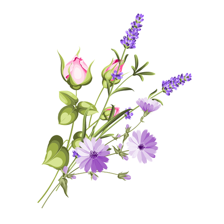 The chicory garland with rose and lavender botanical card. A summer decorative bouquet of endive and rose flowers. Small floral garland. Vector illustration. Stockfoto - 104951401