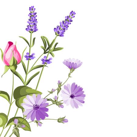 Label with lavender. Bunch of lavender flowers on a white background. Botanical illustration in vintage style. Vector illustration. Stock Illustratie