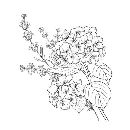 Disegno floreale di lavanda e ortensia isolato su sfondo bianco. Mazzo di fiori primaverili in stile schizzo di linea. Illustrazione vettoriale