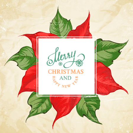 Christmas card with poinsettia flower pattern and template text. Vector illustration.