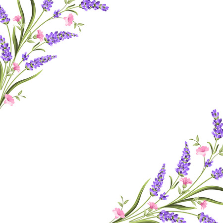 Elegant card with lavender flowers in watercolor paint style. The lavender frame and text. Lavender border for your text presentation. Vector illustration. Vectores