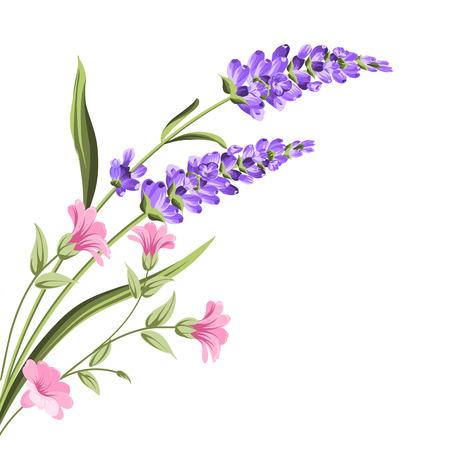 Elegante Karte mit Lavendelblüten im Aquarellfarbenstil. Der Lavendelrahmen und -text. Lavendelstrauß für Ihre Textpräsentation. Vektor-Illustration.