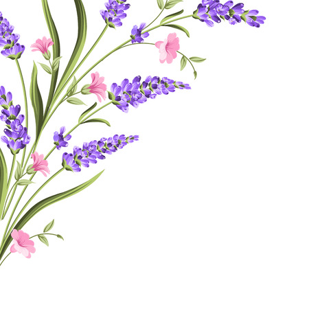 Elegant card with lavender flowers in watercolor paint style. The lavender frame and text. Lavender element for your text presentation. Vector illustration. Zdjęcie Seryjne - 125338682