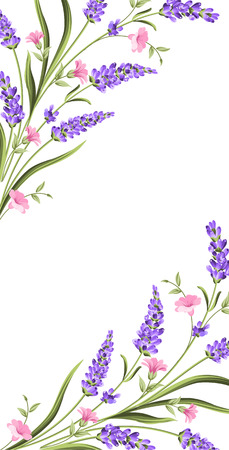Elegant card with lavender flowers in watercolor paint style. The lavender frame and text. Lavender border for your text presentation. Vector illustration. Ilustracja