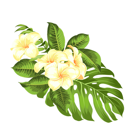 Tropical flower bouquet for your summer holidays card. Vector illustration. Blossom flowers for invitation card over white background. Vector illustration.