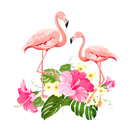 The tropical background. Summer illustration with bouquet of green palm leaves and red hibiscus flowers. Illustration with colorful flamingo on white background. Vector illustration.