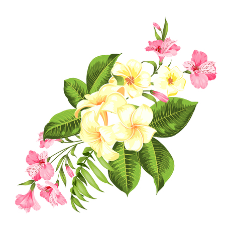 Beautiful card with a wreath of tropical flowers. Tropical flower garland. Blossom flowers for invitation card over white background. Vector illustration. Illustration