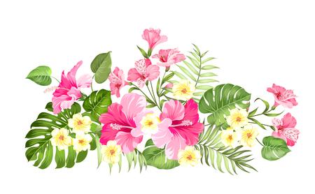 Guirnalda de flores tropicales para el diseño de su tarjeta. Etiqueta con flores de plumeria. Plantilla de tarjeta de invitación con flores de color de alstroemeria. Ilustración de vector.