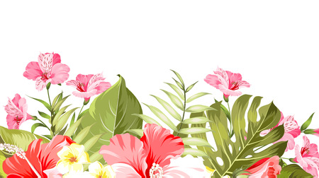 Summer vacation card. Tropical flowers of plumeria and hibiscus at the label. Tropical palm branches with text space on the top of the image. Vector illustration. Vector Illustration