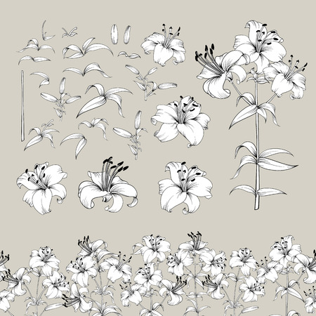 Collection of lily flowers elements. Awesome set for designers. Blossom jungle flower bundle. Black flowers of lilies isolated over gray. Flowers contours collection. Vector illustration. Stock Illustratie