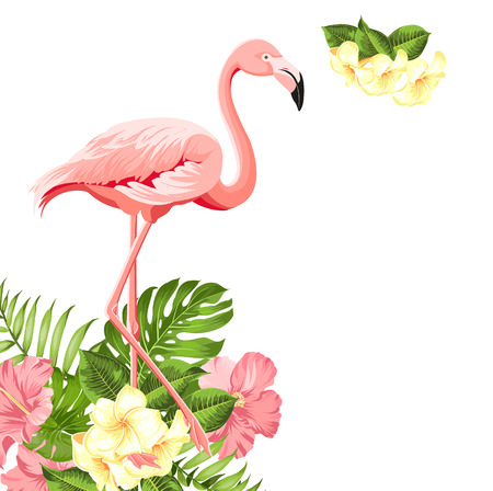 Beautiful tropical image with pink flamingo and plumeria flowers on a white backdrop. Exotic tropical palm tree. Flamingo background and jungle leaf. The Natural background.