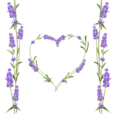 The lavender elegant card with frame of flowers and text place. Lavender garland for your text presentation. Aromatic soap package. Label with lavender flowers. Vector illustration.