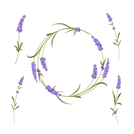 The lavender elegant card with frame of flowers and text place. Lavender garland for your text presentation. Aromatic soap package. Label with lavender flowers. Vector illustration. Vector Illustration